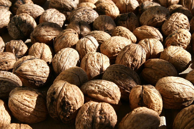 Walnuts and Red Wine, Every Day, Keep Cancer and the Doctor Away