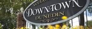 Dunedin Home Inspector - dunedin home inspections