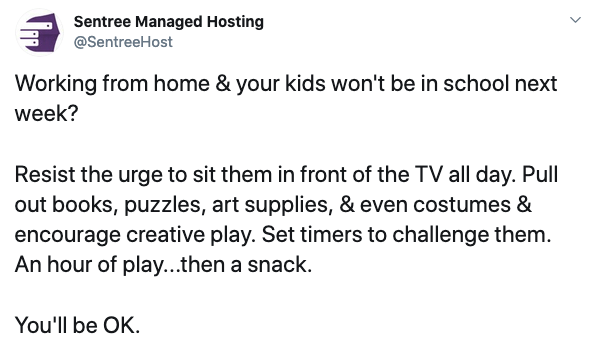 A tweet from Sentree Hosting. Text: Resist the urge to sit them in front of the TV all day. Pull out books, puzzles, art supplies, & even costumes & encourage creative play. Set timers to challenge them. An hour of play...then a snack.