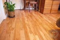Ambrosia Maple Flooring - Wormy Maple Floor