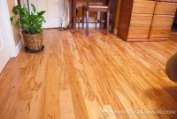 Wood of the Month: Ambrosia Maple (Wormy Maple ...