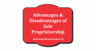 Advantages and Disadvantage of Sole Proprietorship