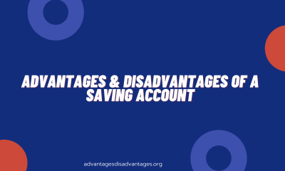 Advantages and Disadvantages of a Savings Account