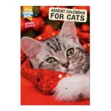 Rød Julekalender til katter
