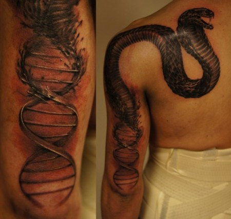 dna_snake_by_strangeris-d5o166v