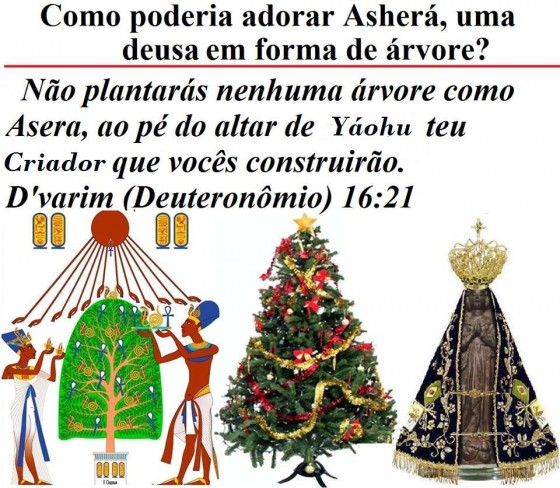 Pecado Coletivo da IASD: Adoração a Asera, a Deusa da Árvore de Natal