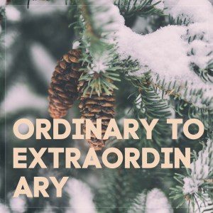 #14 Ordinary to Extraordinary