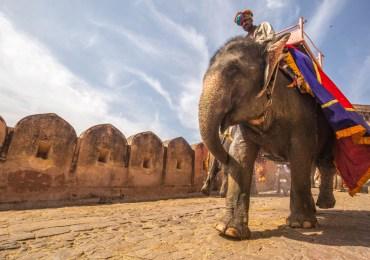 Bike Ride Rajasthan – Crown & Jewels