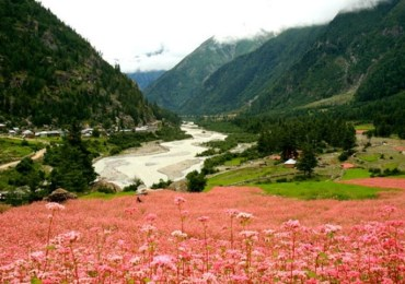 Fishing & Angling Tour in Sangla Valley