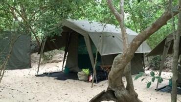Kumana Mobile Tented Camp, Kumana NP