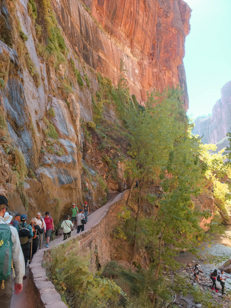 Introduction to Zion National Park Riverside Walk