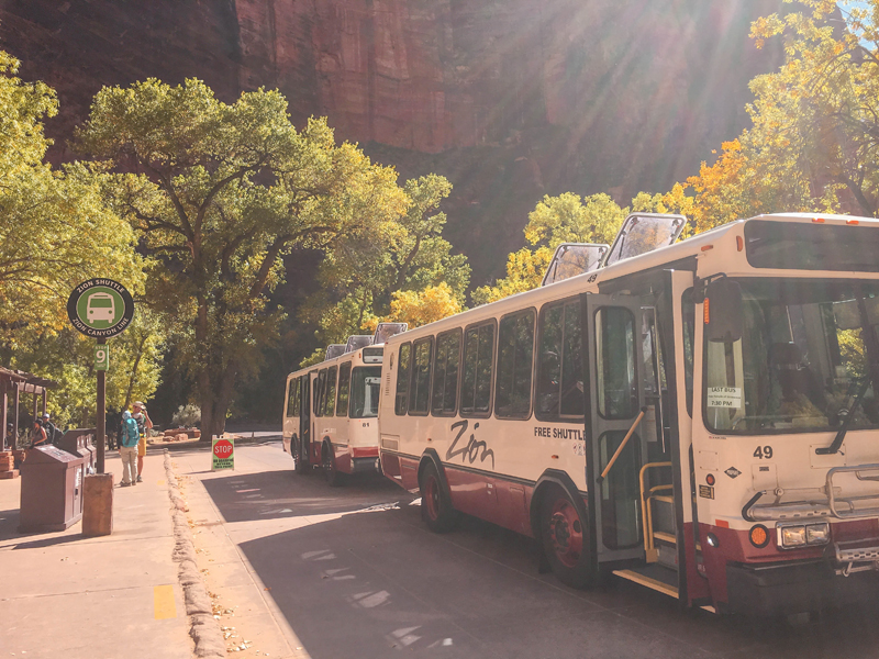 Introduction to Zion National Park Shuttle