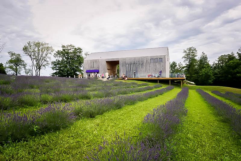 Terre Bleu Lavender Farm Main Building