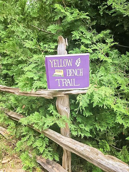 Terre Bleu Lavender Farm Trail
