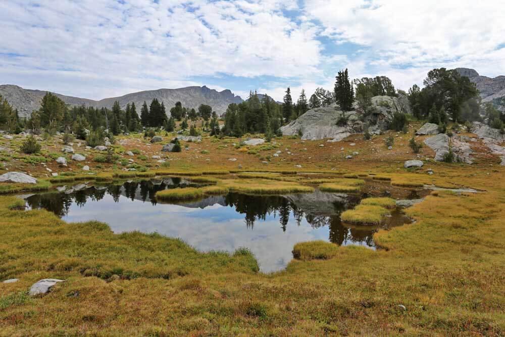 Lakelet and bog between Hall's Lake and Middle Fork Lake.