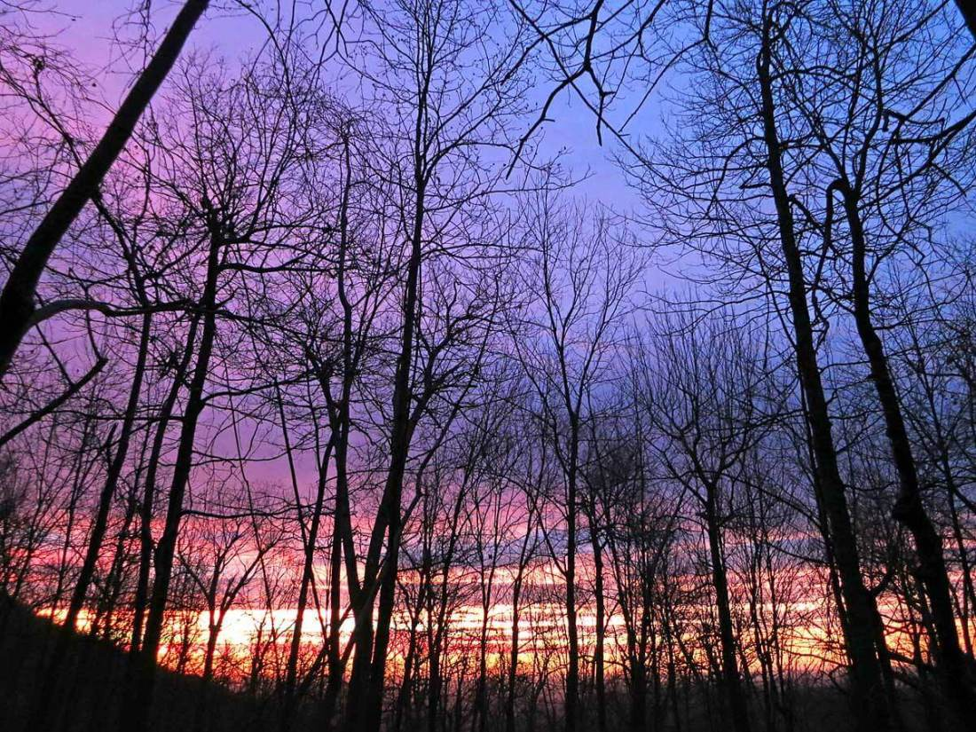Sunrise from my hammock, Shenandoah National Park.