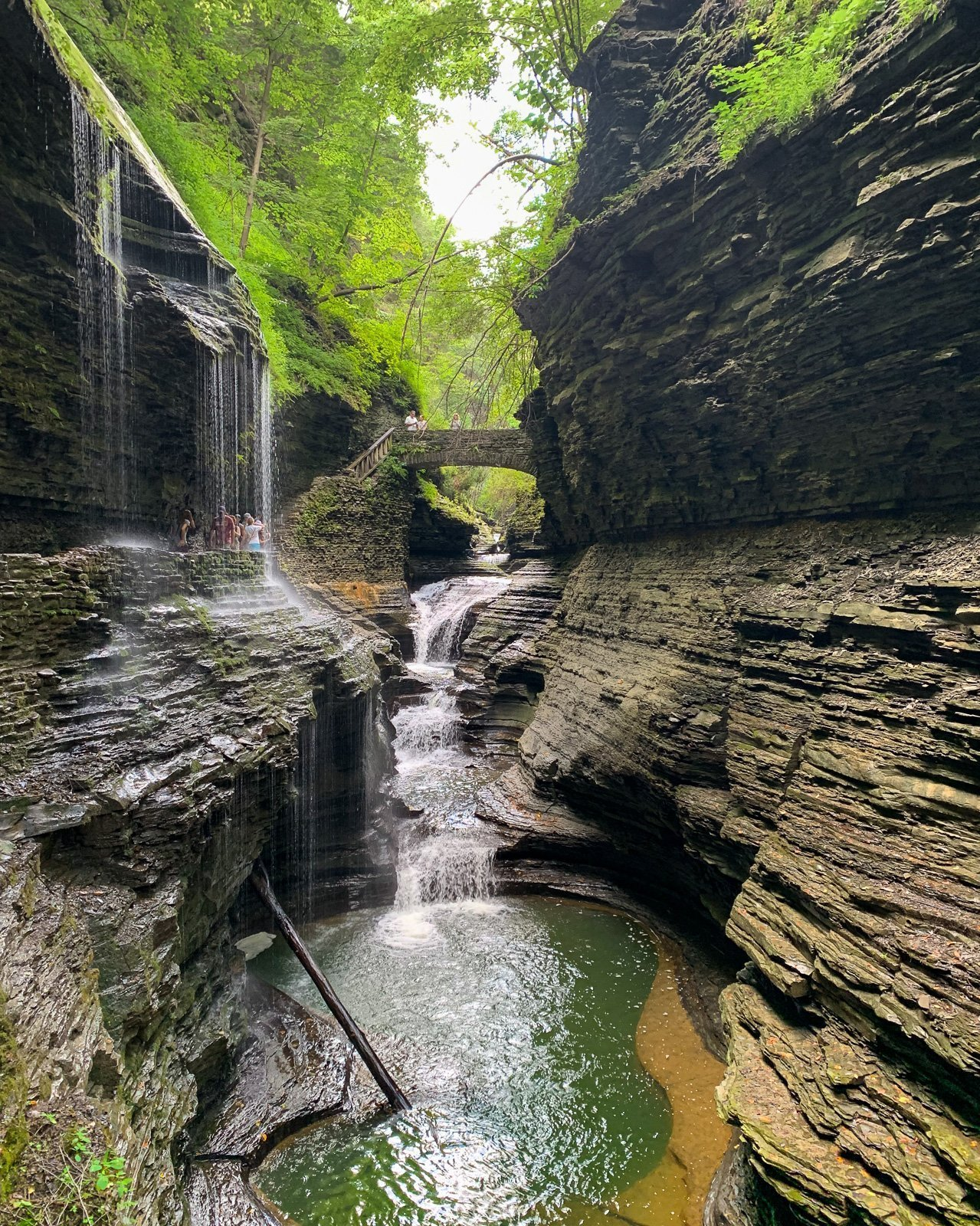 Finger Lakes Gorges - Watkins Glen upper gorge