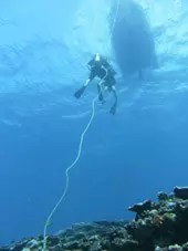 Open Water Dive Rarotonga