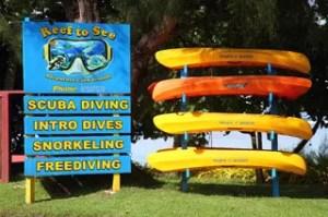 Our single kayaks in Rarotonga