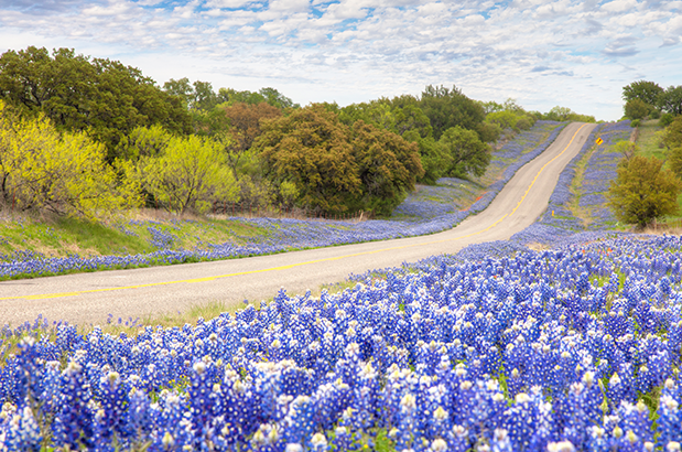 Texas Hill Country Loop  Adventure Cycling Association