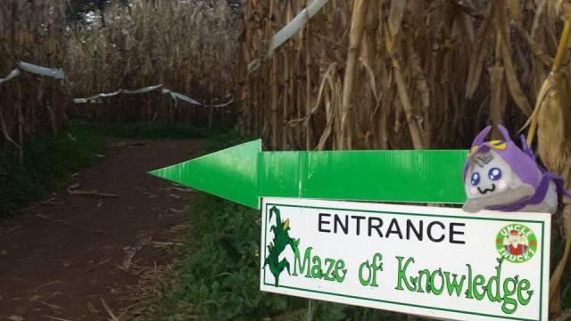 Uncle Shuck's Corn Maze Georgia Entrance Maze of Knowledge