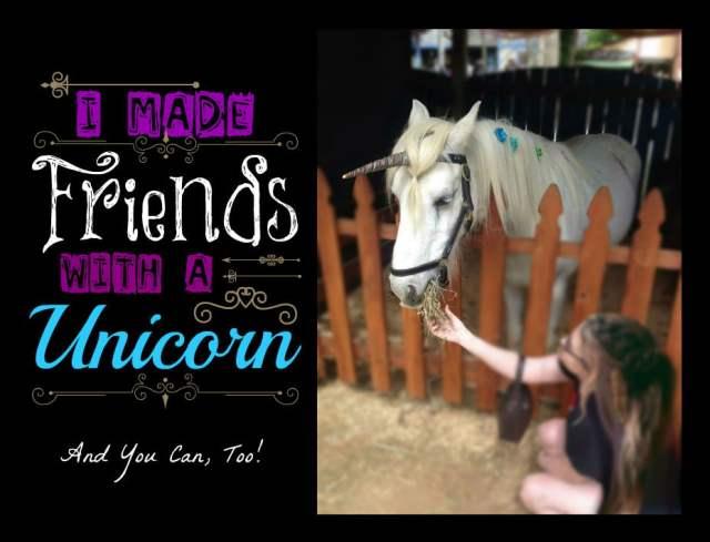 unicorn feature image final3