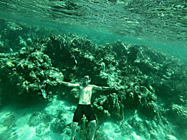 How to swim with sharks Caye Caulker Belize 2nd longest reef in the world