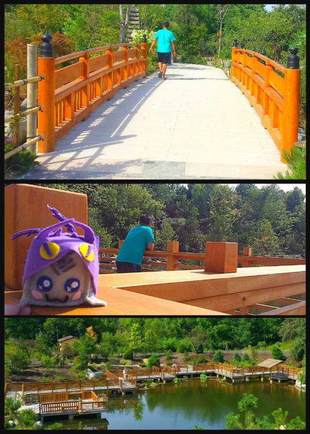 Richard & Helen DeVos JapaneseGarden Frederik Meijer Gardens and Sculpture Park Yatsuhashi Zig Zag Bridge Adventure Dragon