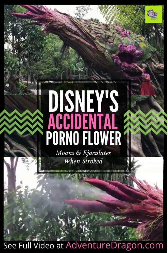 DISNEY'S ACCIDENTALLY PORNOGRAPHIC FLOWER moans and ejaculates when stroked