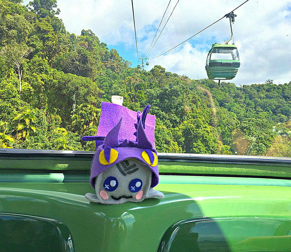Cairns Skyrail Rainforest Cableway Diamond View Gondola