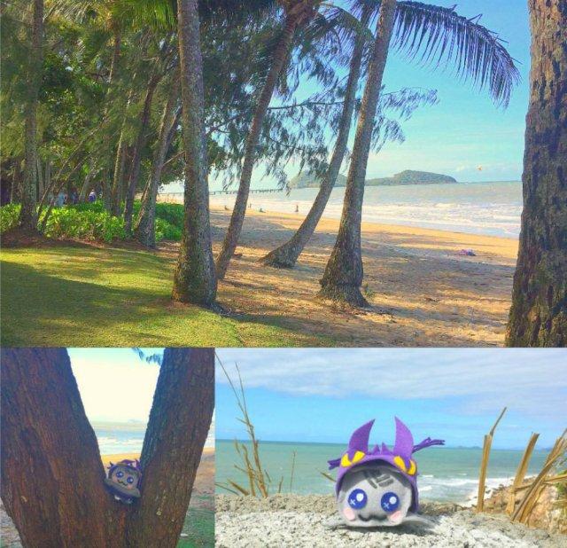 best beaches in Cairns Palm Cove Beach