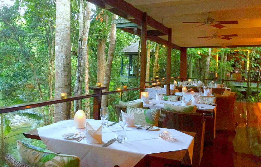 Treehouse Hotel and Restaurant in the Daintree Rainforest-самые красивые места в Австралии фотографии