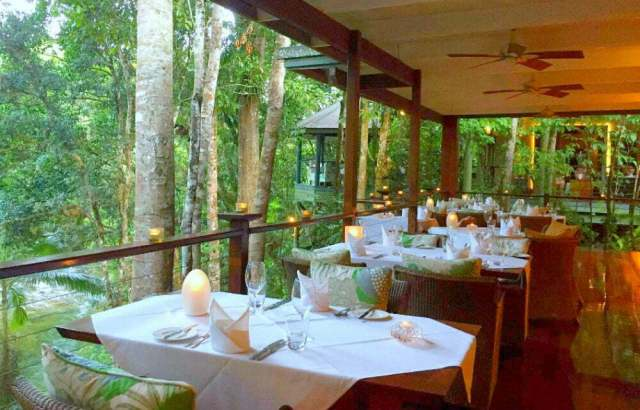 Unusual Quirky Hotels in Australia Unique Stays - rainforest treehouse hotel Silky Oaks Lodge