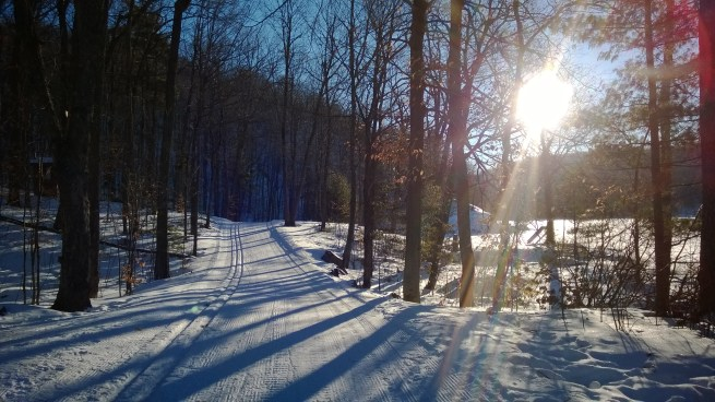 Cross country ski trail.
