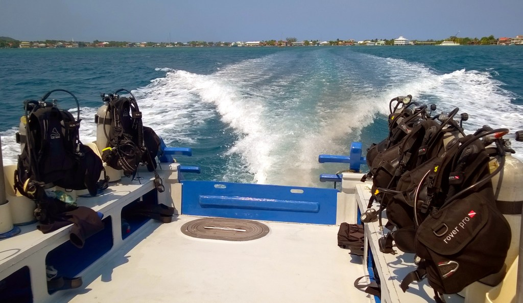 Heading out for a dive.