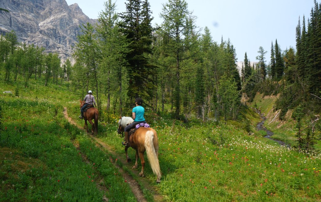 Riding through wildflowers as we arrive at Diana Lake.