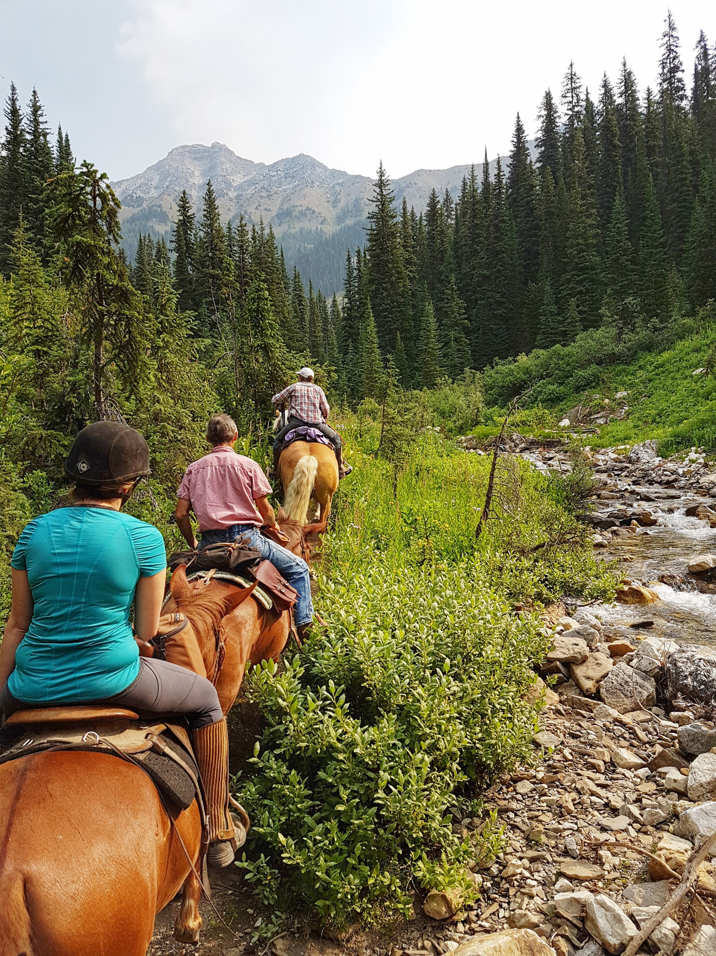 Riding by a cold mountain stream.