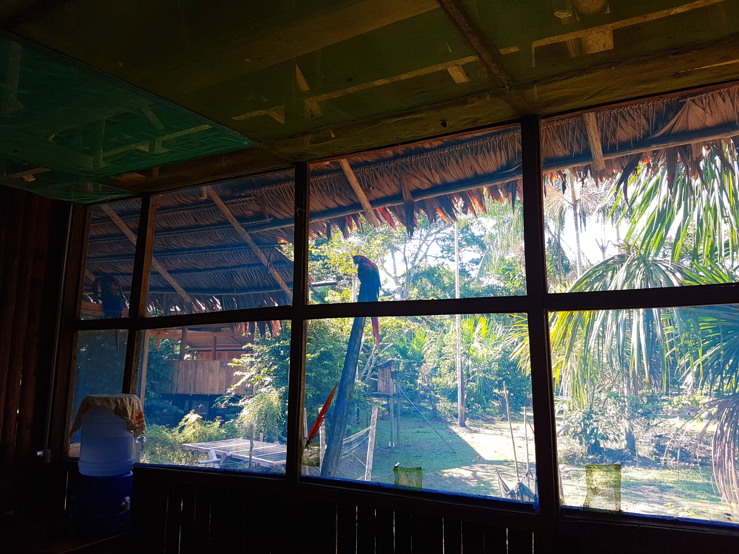 Looking through the dinning room.