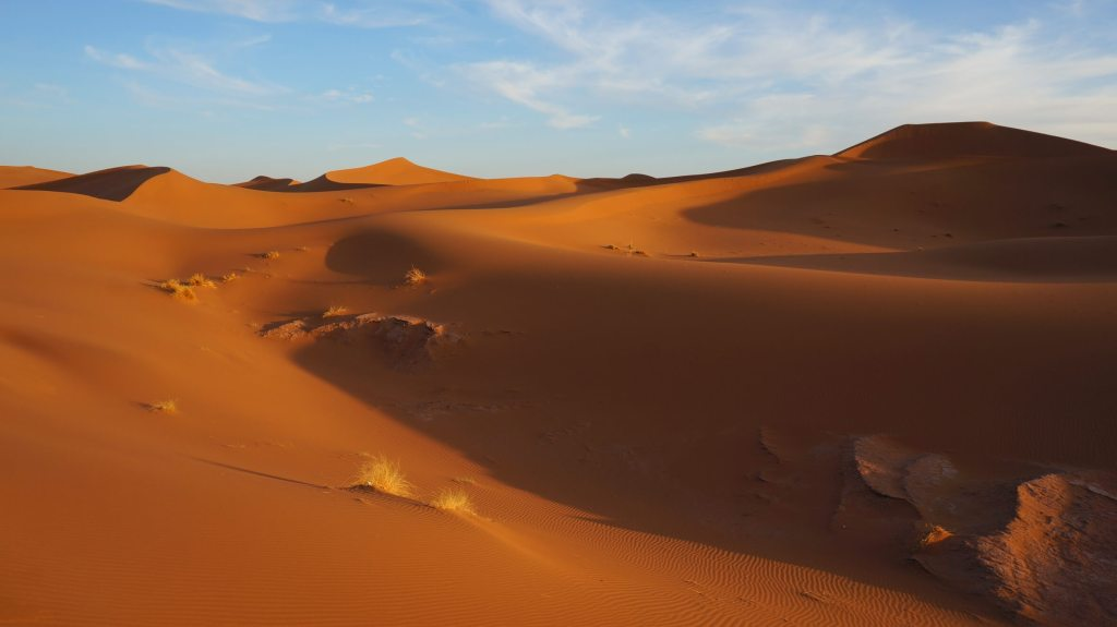 The sand dunes behind camp.