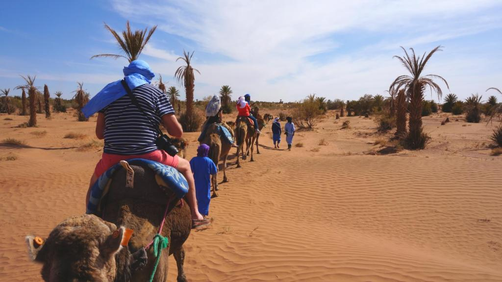 Camel safari in the Sahara Desert.
