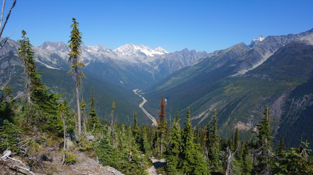 View of the TCH and Rogers Pass from the Abbott Ridge trail.