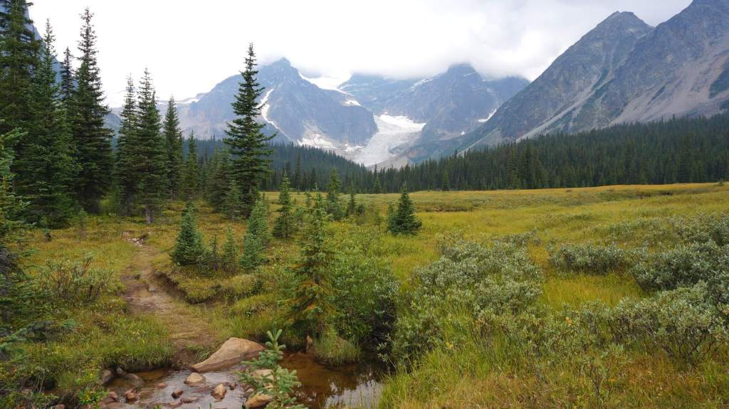 The mountain scenery in Tonquin Valley.