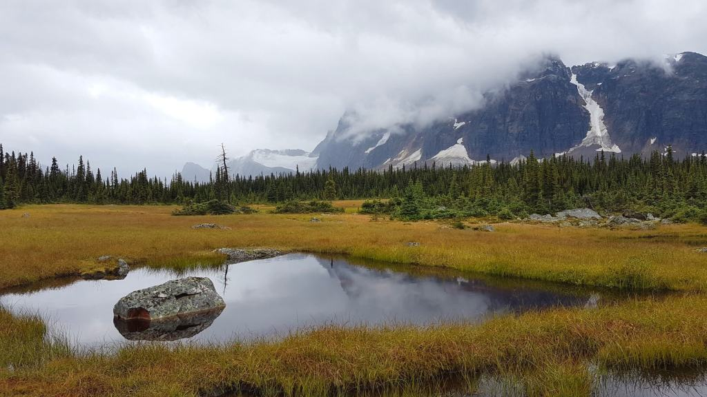 Tonquin Valley in the rain was still gorgeous!