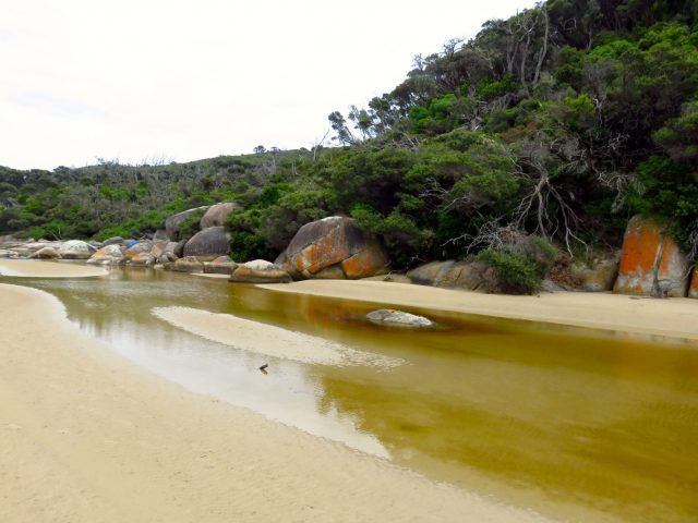 Tidal River at Wilson's Promontory National Park