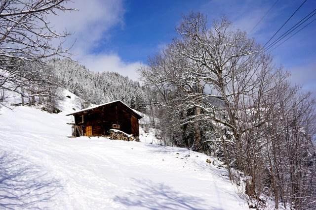 five days in switzerland - 5 day itinerary for switzerland interlaken gimmelwald