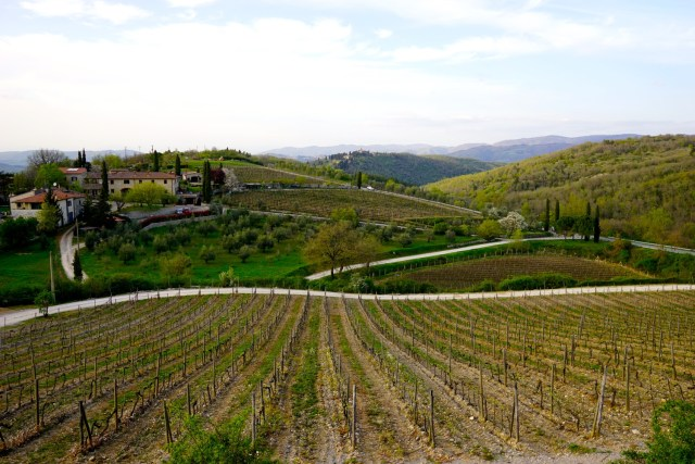 the best day trips from florence tuscan wine tour