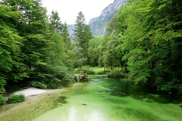 5 days in Slovenia Lake Bled Bohinj Vintgar Gorge