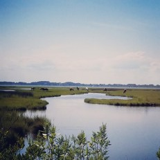 James Farm Preserve