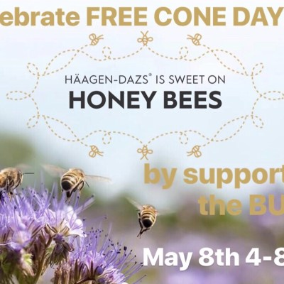 FREE CONE DAY at Häagen-Dazs is the BEES KNEES!