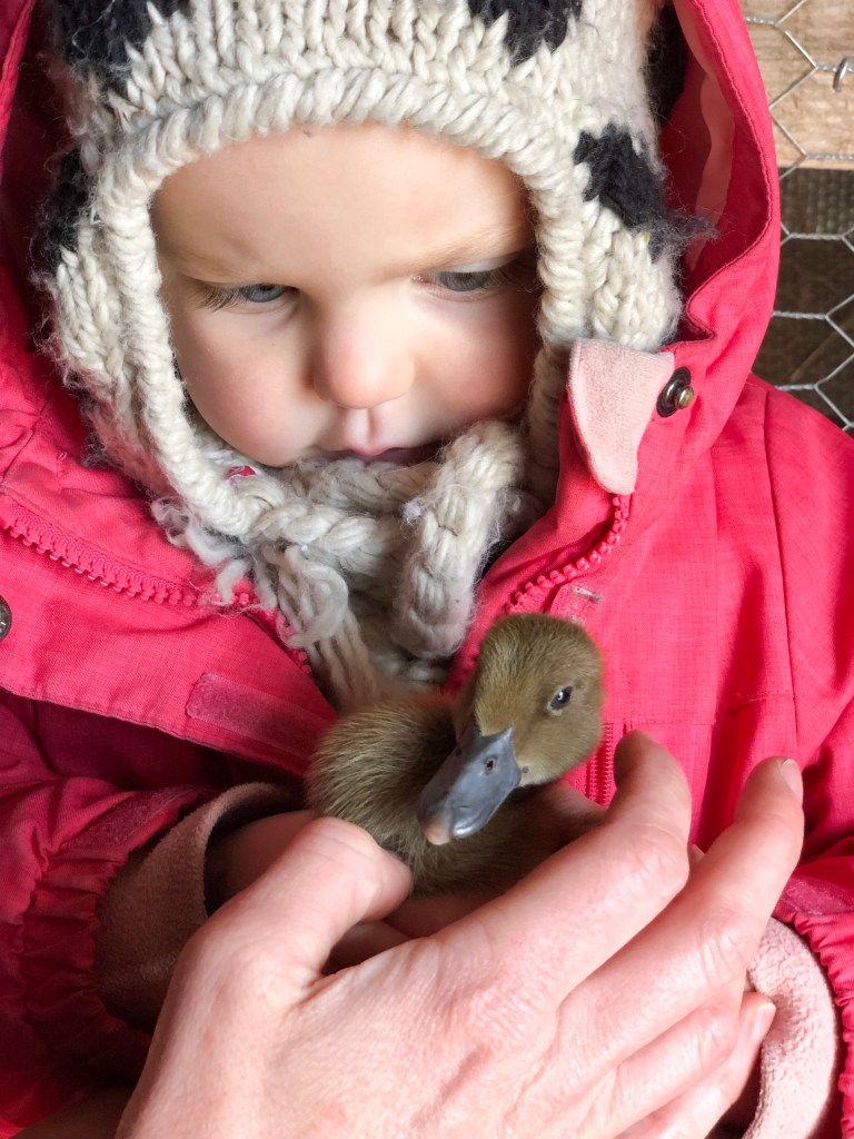 girl with baby duck